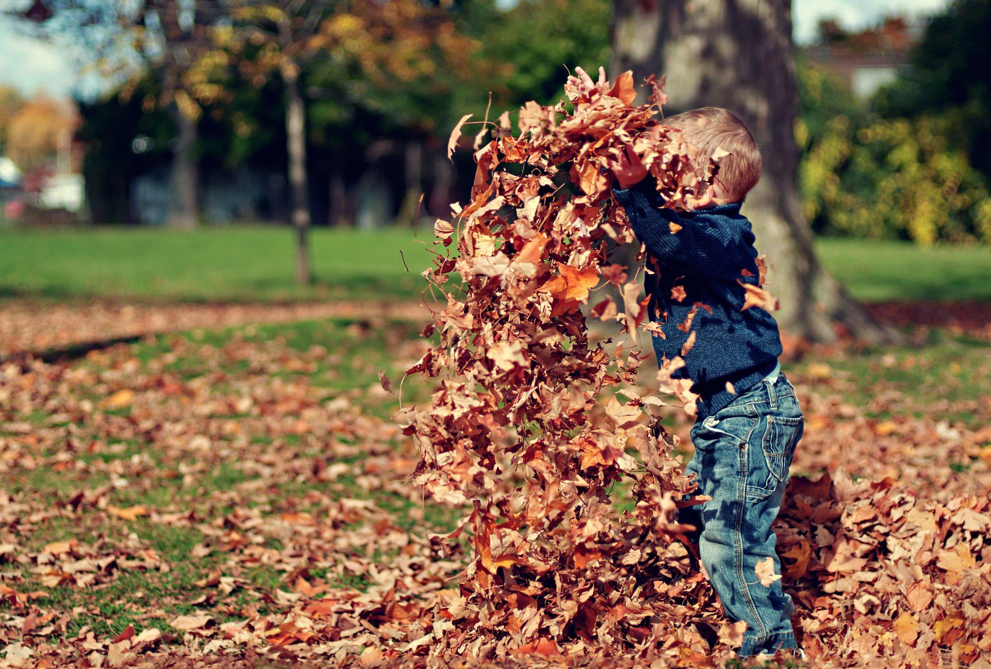 Fall Fun - Communication Activities Using Fall Vocabulary