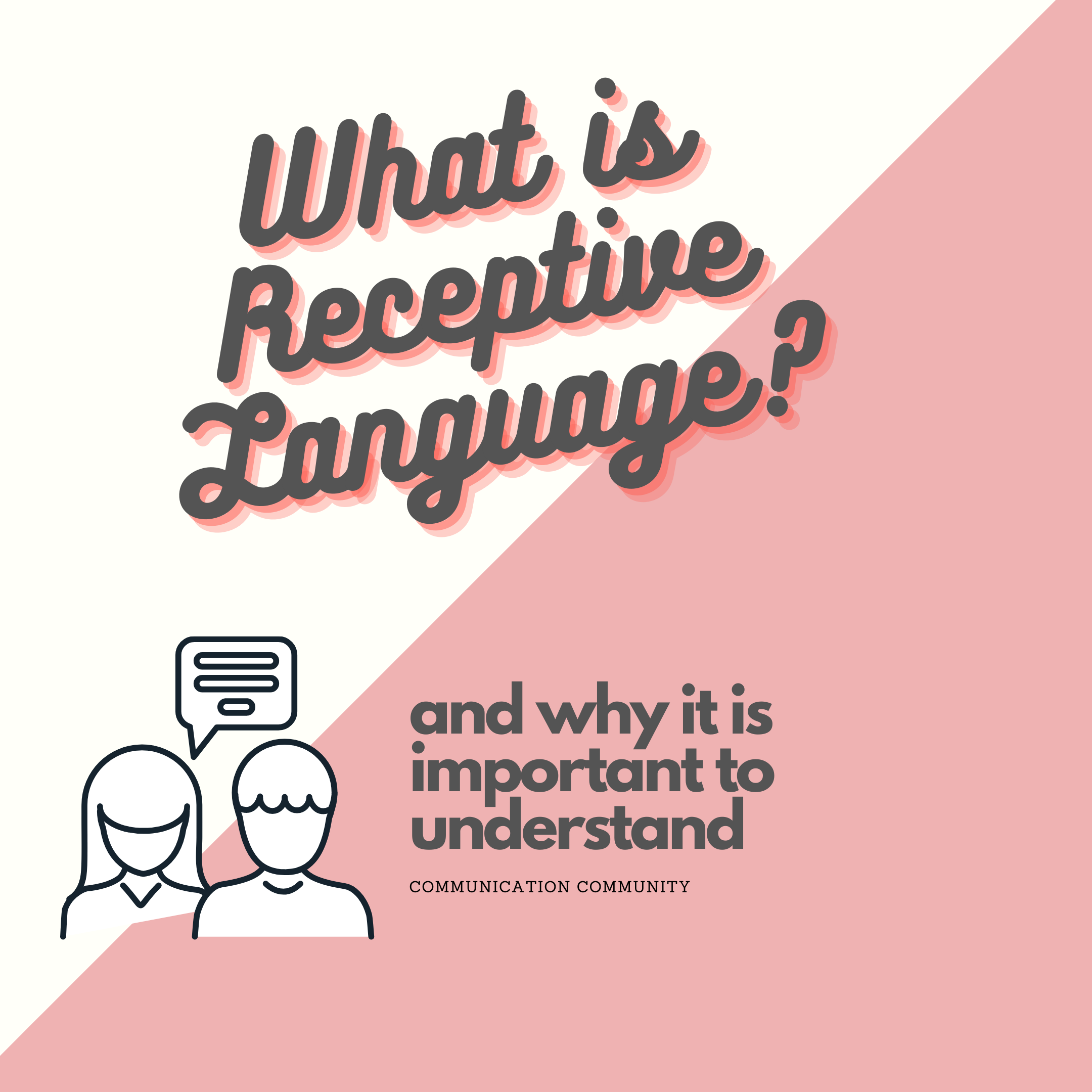 What is Receptive Language? (And Why it is Important to Understand)